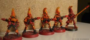 Eldar Fire Dragons by NPlusPlus