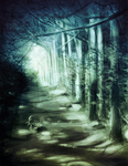 A forest by Silverlina