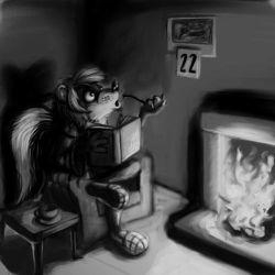 Skunk by the fire by metalik-fairy