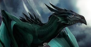 Dragon Vermaks by IrenBee
