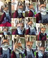 Kangaroo collage by Magpieb0nes
