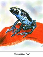 Dyeing Poison Frog by JamieCOTC