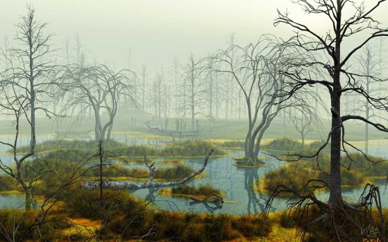 Swamp 2 by spangenberger