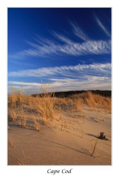 Cape Cod 1 by cra5her