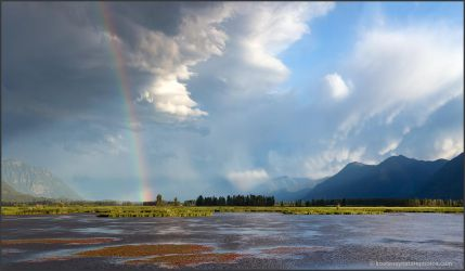 Duck Lake Marsh by kootenayphotos