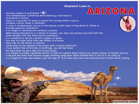 Stupidest Laws 1 by asgaron