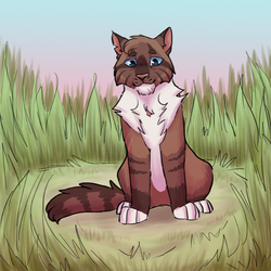 Hawkfrost by paintedpaw-cat
