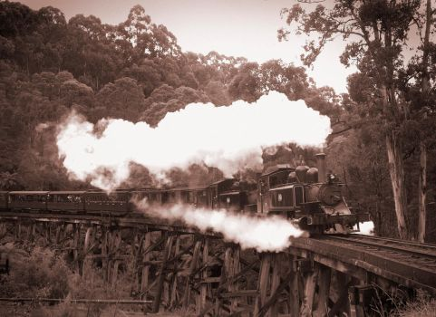 Puffing Billy by biawak