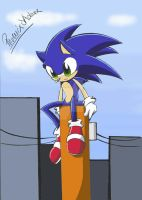 Sonic -looking at something- by PhoenixSAlover