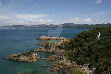 Somes Island Wellington - Lighthouse by VenusFlowerDesignNZ