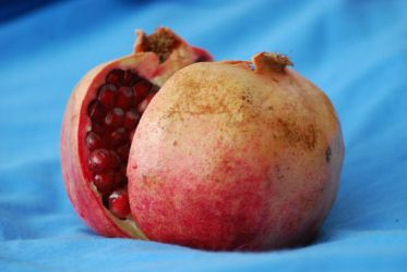 pomegranate 2 by FreeStyledStock