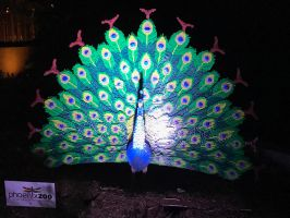 Zoo lights peacock lego statue  by Mad1dragon