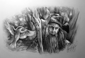 Radagast the Brown by AndreevaPolina