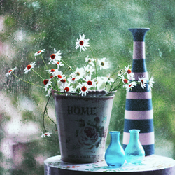 If you love flowers and rain. by bebefromtheblock