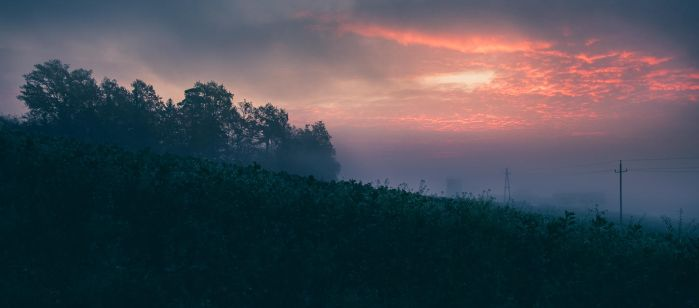Morning Glory 2 by tobiasth