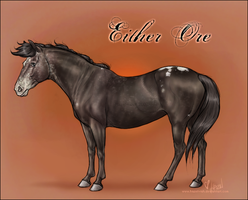 Either Ore by Hazel-rah