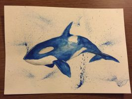 Whale by PunkishLen