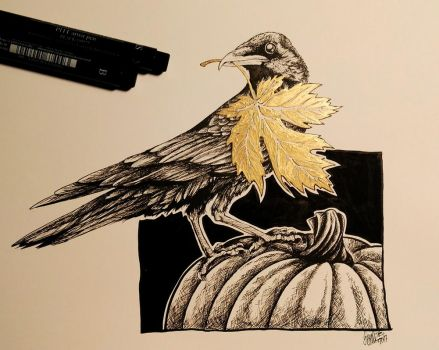 crow by SpankTB