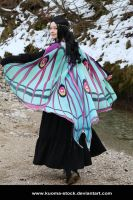Winter Moth 12 by Kuoma-stock