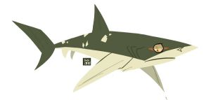 Pacific Sharpnose Shark by Hodori