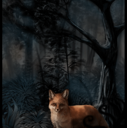 Contest Entry - Enchanted Forest by MidnightFedora
