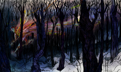 winter forest by faQy