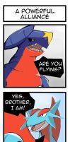 PKMN: A Powerful Alliance