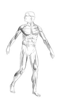 Anatomy drawing by discipleneil777