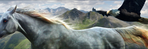 Premade Banner by Liberty-Designs