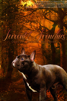 Fervent Frenchies by BerlinlavsMarie