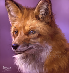 foxy fox - a quick study by 4steex