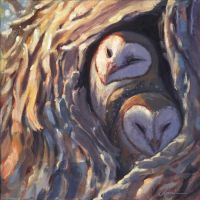 Barn Owls by Camelid