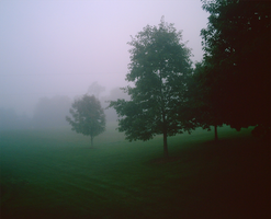 .. Into The Fog .. by DoomTaco