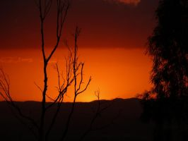 Outback in Brisbane by Meggsy