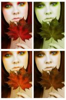 Colors of Autumn by Basistka