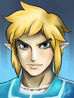 Breath of the Wild Link by Ranbooby