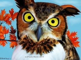 Great Horned Owl In The Autumn by youlittlemonkey