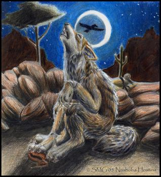 Why Coyote Cries at Night by Nashoba-Hostina