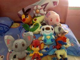 My Pokemon Plushies