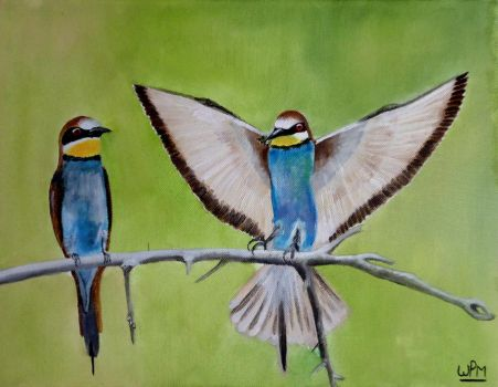 Bee eaters by WendyMitchell