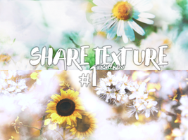 SHARE TEXTURE #1 by sSellBboo
