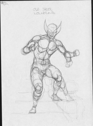 Wolverine rough by visualelephant