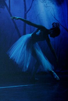 ballet IV by picturesgotsmall