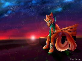 Almost night (Com) by Hoa-prox