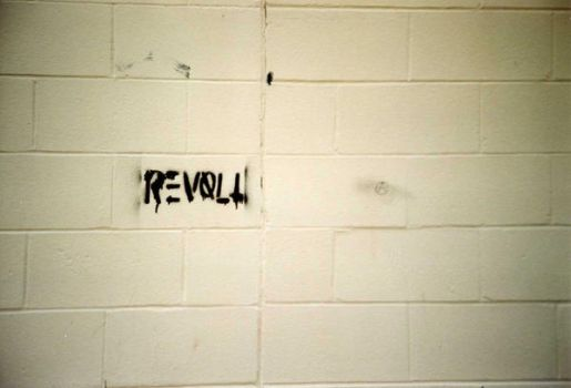 Revolt by RabbitMilk