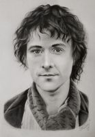 Billy Boyd - Pippin Took by MidnightRoseGarden