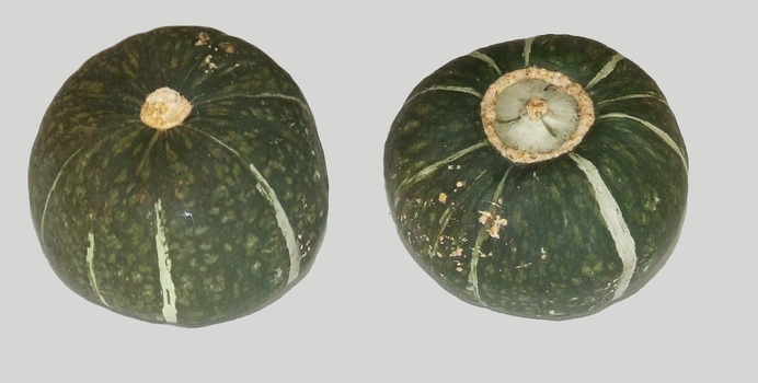 Kabocha Two Views by dtf-stock
