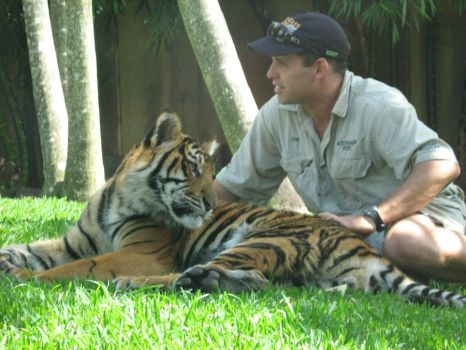 Sumatran Tiger and Keeper by Fly-the-hedgehog3