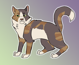 Tawnypelt by paintedpaw-cat