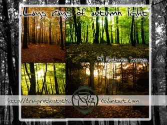 Last Rays Of Autumn Light - Stockpack by Dragoroth-stock